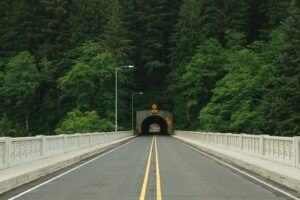 photo-of-road-tunnel-surrounded-with-trees