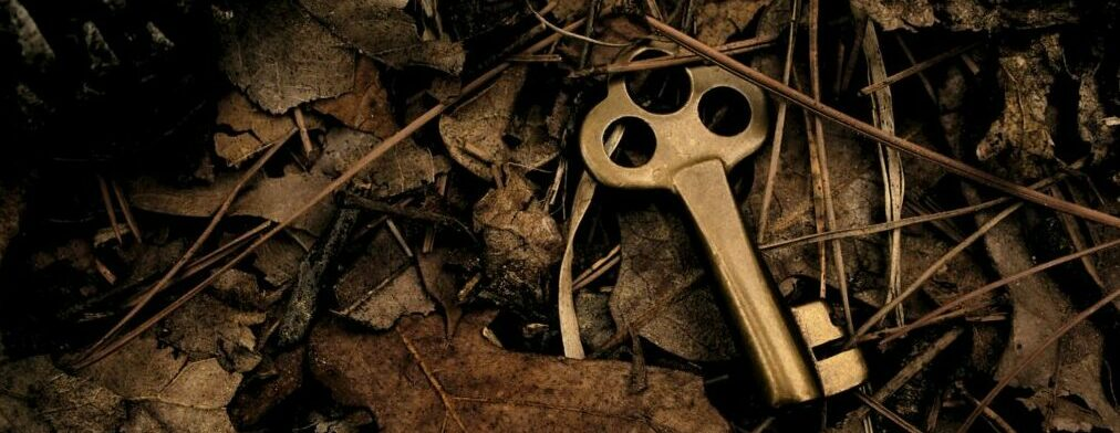 skeleton-key-surrounded-by-dry-leaves